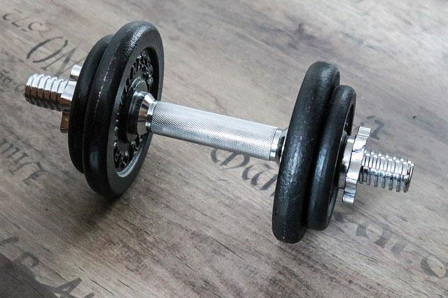 altère musculation
