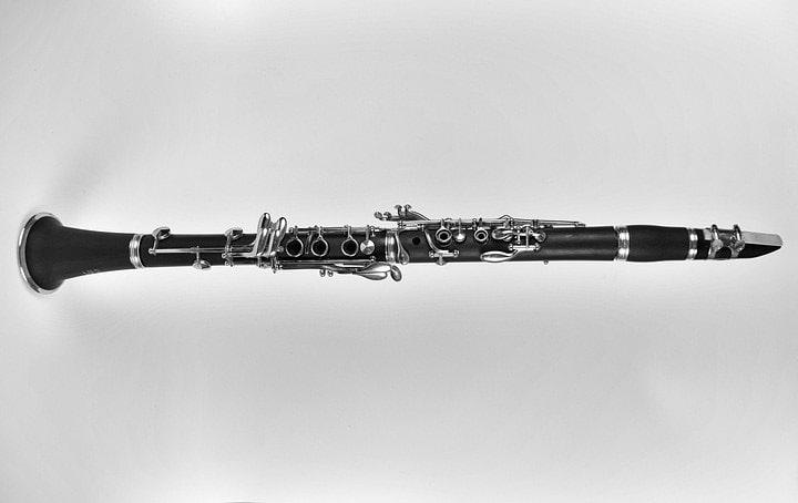 Comment choisir une anche de clarinette ?