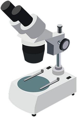 achat microscope usb